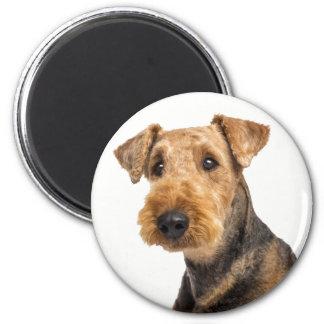 Airedale Terrier Brown u. schwarzes Hündchen Runder Magnet 5,1 Cm