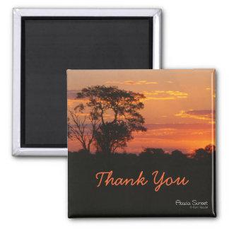 Akazien-Sonnenuntergang danken Ihnen Magnet Quadratischer Magnet