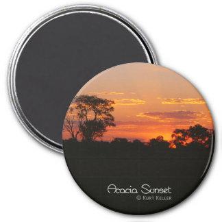 Akazien-Sonnenuntergang Runder Magnet 7,6 Cm
