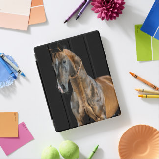 Akhal-Teke Pferd iPad Hülle