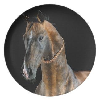 Akhal-Teke Pferd Melaminteller