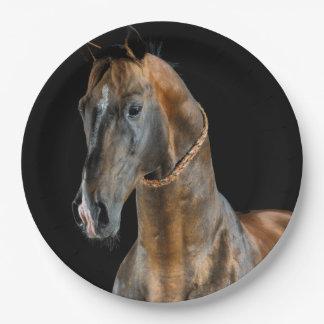 Akhal-Teke Pferd Pappteller