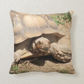 Ala Aldabra Kissen