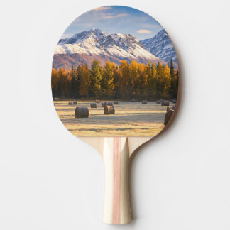 Alaska-Landwirtschaft Tischtennis Schläger