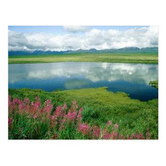 Alaska Postkarte