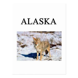 Alaska Postkarten