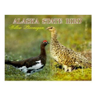 Alaska-Staats-Vogel - Weide-Alpenschneehuhn Postkarte