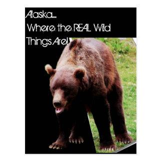 Alaska…, wo die wirklichen wilden Sachen 3-D Postkarte