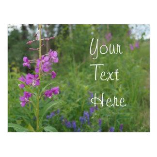 Alaskafireweed-Wildblume Postkarte