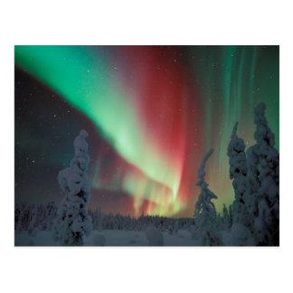 Alaskische Aurora Borealis Postkarte