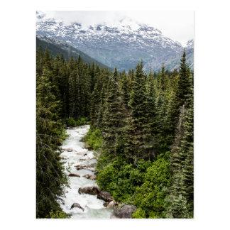 Alaskische Nebenfluss-Postkarte Postkarte