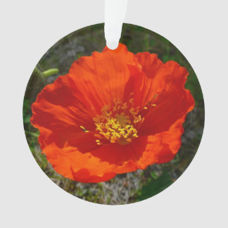 Alaskische rote Mohnblumen-bunte Blume Ornament