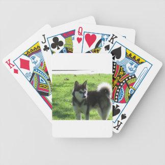 Alaskischer Klee Kai Hund Bicycle Spielkarten