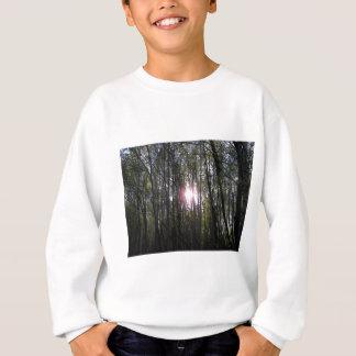 Alaskischer Sun Sweatshirt