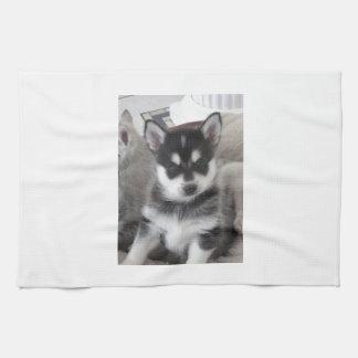 Alaskisches Klee Kai Hündchen Handtuch