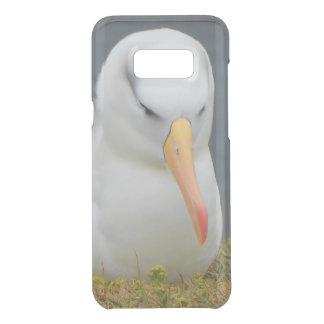 Albatros-Vogel vor der Küste von Neuseeland Get Uncommon Samsung Galaxy S8 Plus Hülle
