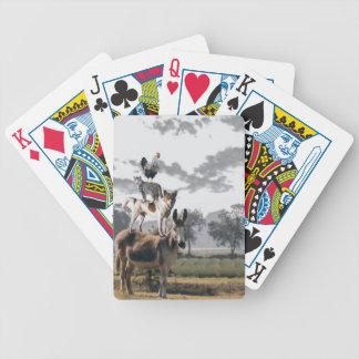 Alberne Tierspielkarten Bicycle Spielkarten