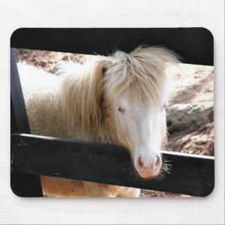 Albino, das Pony schaut Mousepads