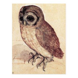 Albrecht Durer die kleine Eulen-Postkarte Postkarte