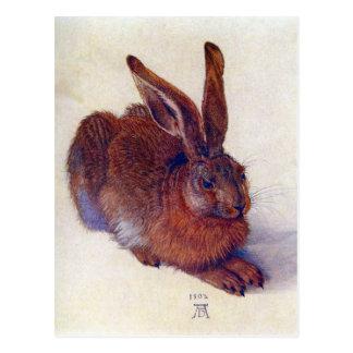 Albrecht Durer - Feldhase Postkarte