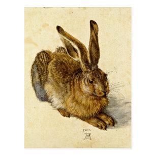 Albrecht Dürer Kunstkarte Postkarte nicht signiert