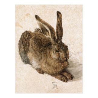 Albrecht Dürer - Junger Hase (junger Hase), 1502 Postkarte