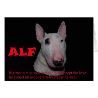 ALF, der die Liebe annimmt Karte