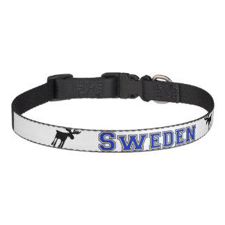 Älg / Moose, Sweden Haustierhalsband