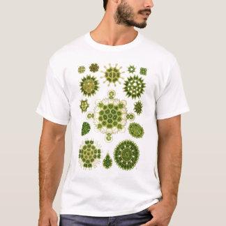 Algen-T-Shirt T-Shirt