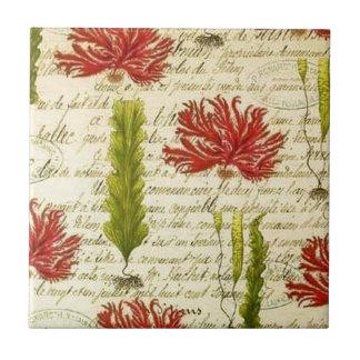Algen und Chor- Keramikfliese