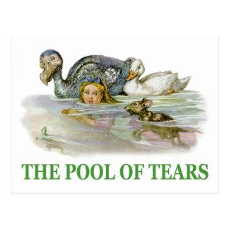 Alice-Schwimmen im Pool der Risse Postkarte