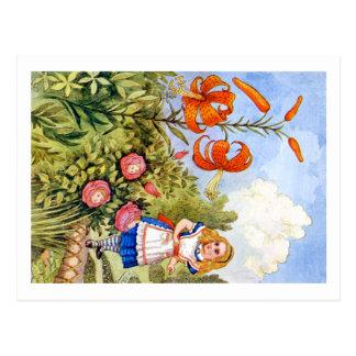 Alice-Treffen, die Blumen im Märchenland sprechen Postkarte