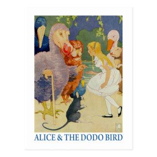 Alice und der Dodo-Vogel Postkarte