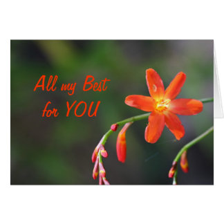 All my Best ................. Greeting Card