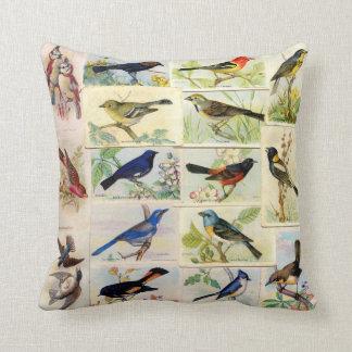 Alle Art der Vögel Kissen