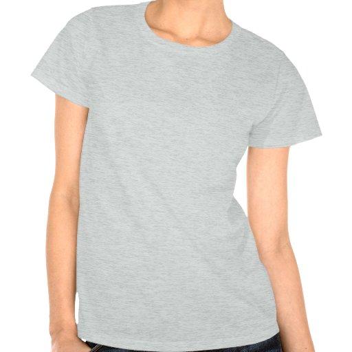 Alle, die Sie benötigen, ist Liebe und eine Katze T Shirts