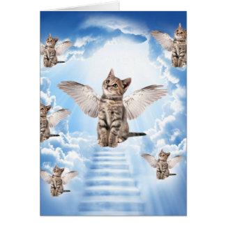 Alle Katzen gehen zum Himmel Karte