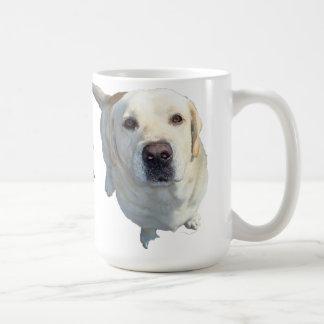 Alle Nahrung muss zur (gelben) Kaffeetasse