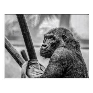Alleiner Gorilla Postkarte