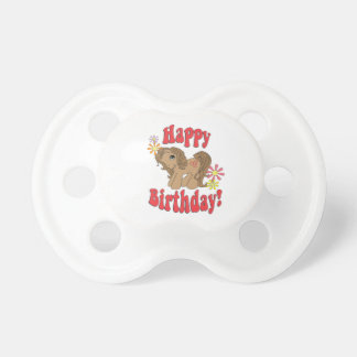 Alles Gute zum Geburtstag 4 Schnuller