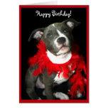 Alles Gute zum Geburtstag blaue Pitbull Grußkarte