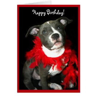 Alles Gute zum Geburtstag blaue Pitbull Karte