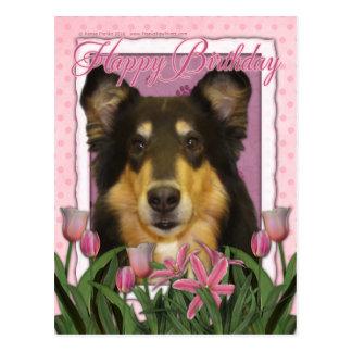 Alles Gute zum Geburtstag - Collie - Caroline Postkarte