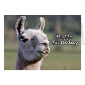 Alles Gute zum Geburtstag des Lamas des alles Gute Grußkarte