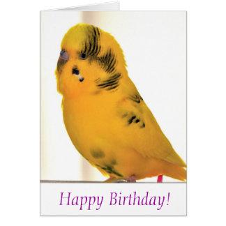 Alles Gute zum Geburtstag von Tweetie Karte