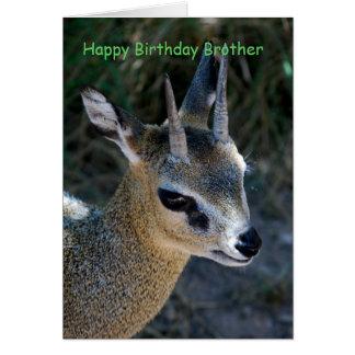Alles- Gute zum Geburtstagbruder Karte