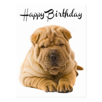 Alles- Gute zum Geburtstagchinese Shar Pei Postkarte