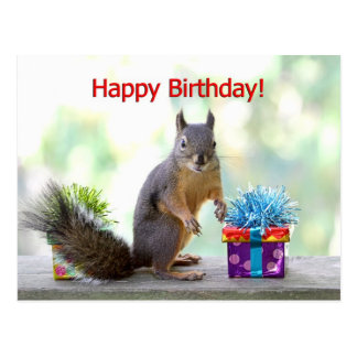 Alles- Gute zum Geburtstageichhörnchen