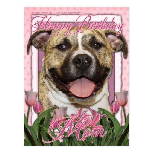 Alles- Gute zum Geburtstagmamma Pitbull - Tigger Postkarten