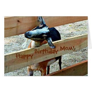 Alles- Gute zum Geburtstagmamma vom Lieblingskind Grußkarte